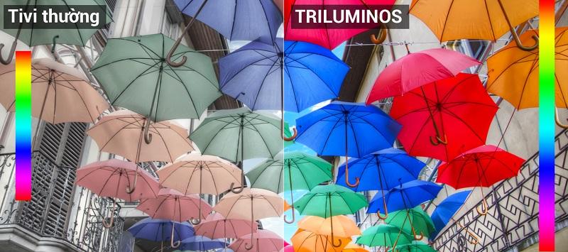 Công nghệ màn hình TRILUMINOS