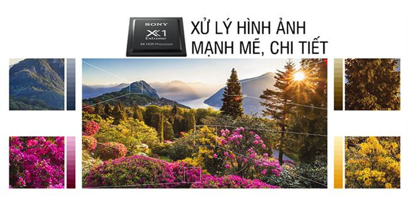 Bộ xử lý hình ảnh X1