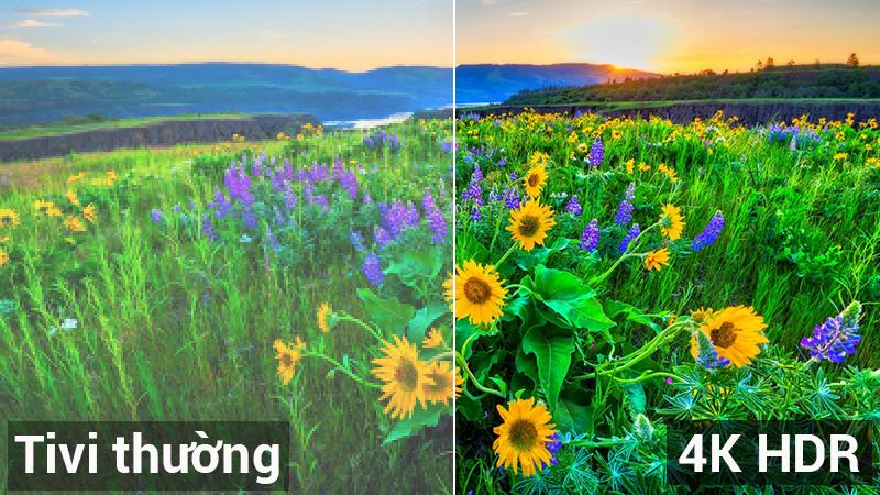 Hình ảnh sắc nét 4K với công nghệ HDR