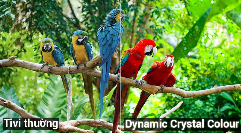 Công nghệ Dynamic Crystal Colour Smart Tivi Samsung 4K 55 inch UA55NU7400