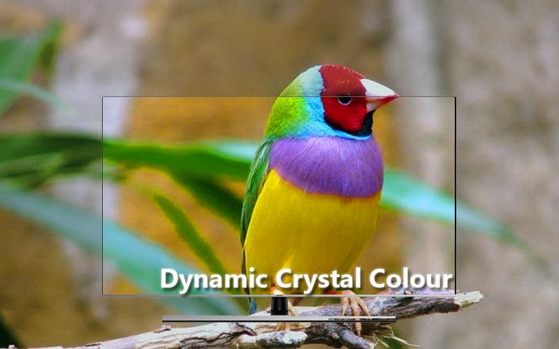công nghệ Daynamic Crystal Colour Smart Tivi Samsung 4K 75 inch UA75NU8000