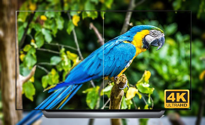 Độ phân giải 4K sắc nét trên Smart Tivi OLED LG 4K 55 inch 55C8PTA