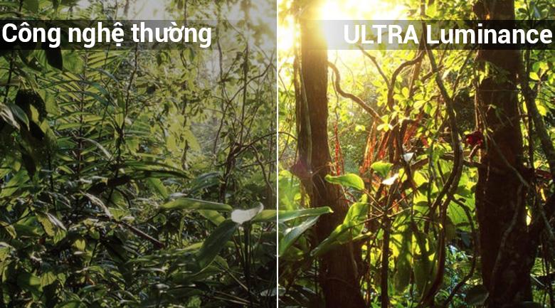 Smart Tivi LG 4K 65 inch 65SK8000PTA - ULTRA Luminance