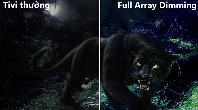 Công nghệ đèn nền Full Array Dimming
