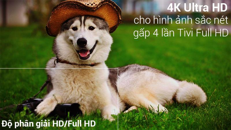 Độ phân giải 4K trên Smart Tivi LG 4K 49 inch 49SK8500PTA