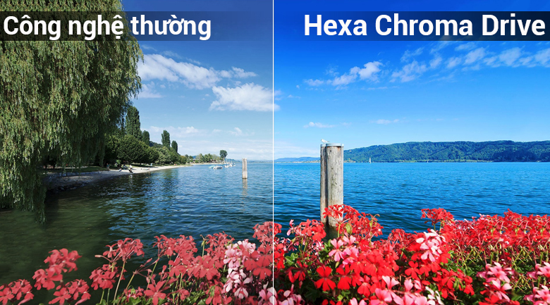 Công nghệ Hexa Chroma Drive trên Smart Tivi LG 49 inch 49LK5700PTA