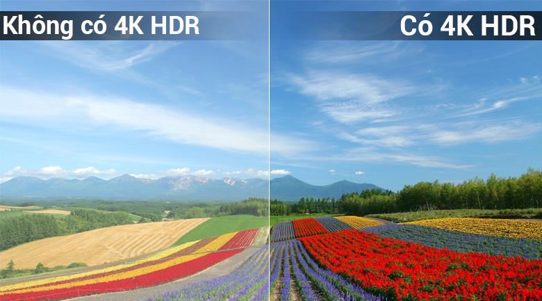 Smart Tivi Panasonic 4K 43 inch TH-43FX600V - 4K HDR