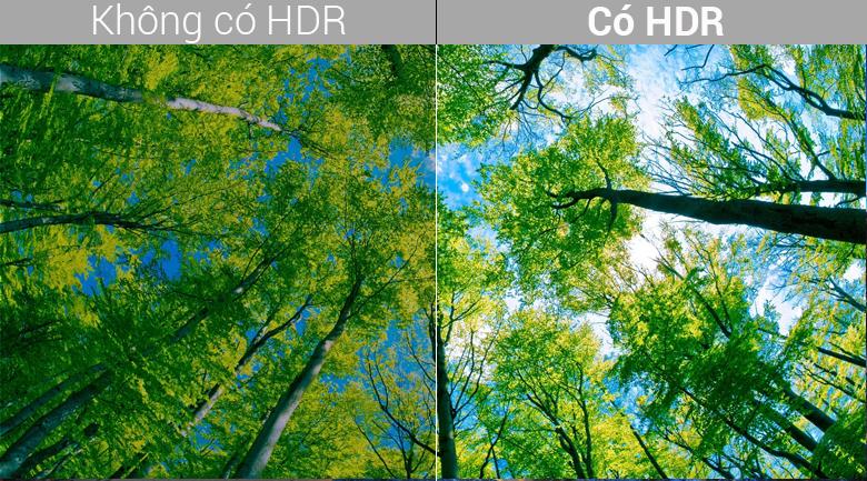 Hình ảnh chân thật với công nghệ 4K HDR hết hợp Dolby Vision