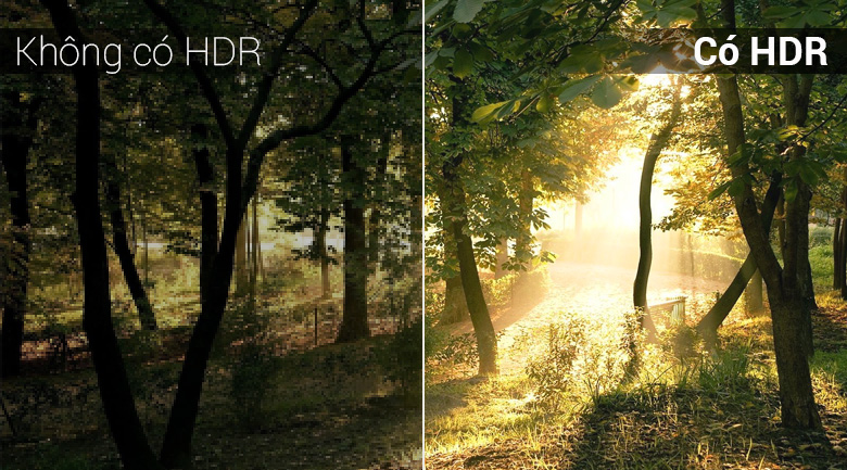 Công nghệ HDR trên Tivi LED Panasonic TH-43FX500V