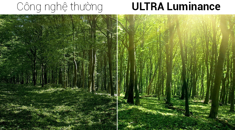 Smart Tivi OLED LG 4K 77 inch 77W8PTA - Công nghệ ULTRA Luminance