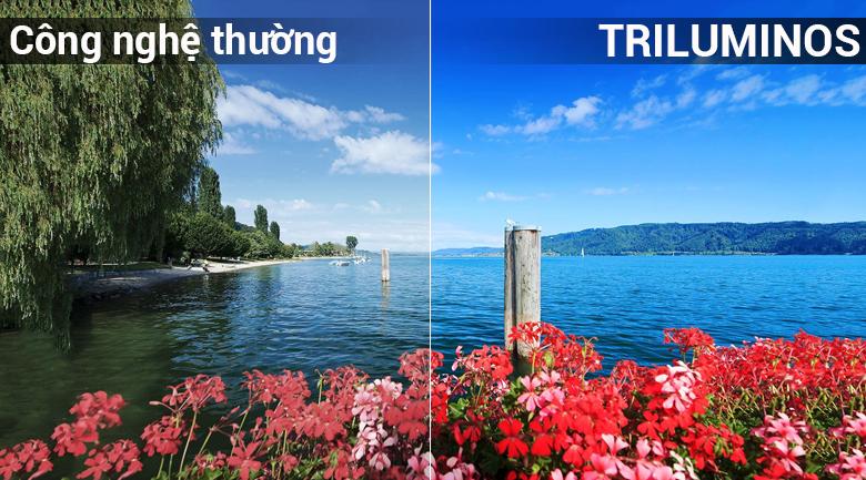 Công nghệ TRILUMINOS trên Android Tivi OLED Sony 4K 65 inch KD-65A8F