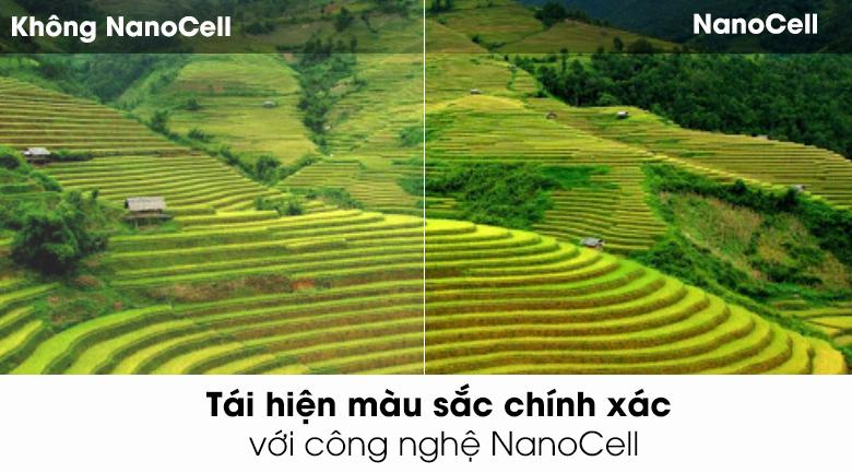 NanoCell-Smart Tivi NanoCell LG 4K 49 inch 49SK8000PTA