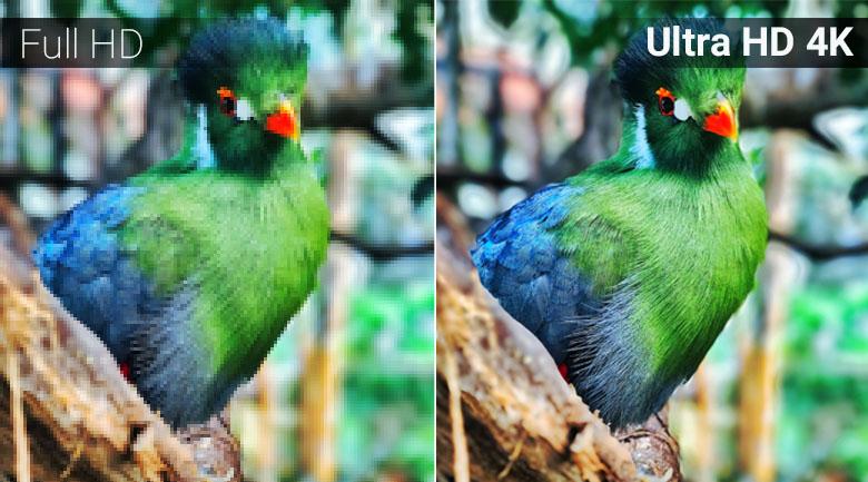 Độ phân giải Ultra HD 4K trên Smart Tivi Samsung 4K 50 inch UA50NU7090
