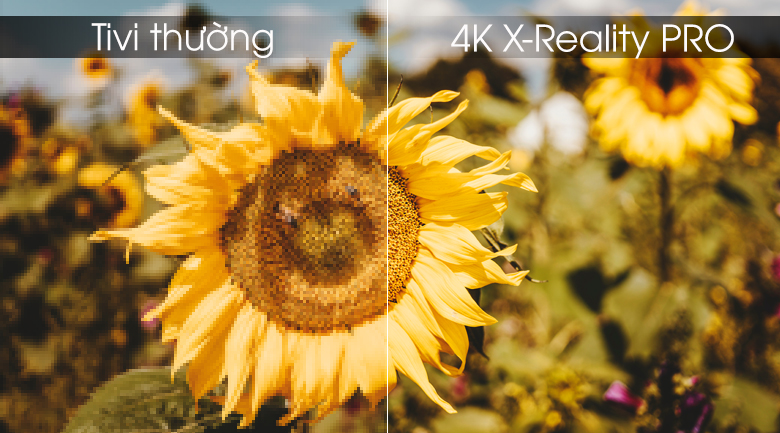 4K X-Reality PRO - Android Tivi OLED Sony 4K 55 inch KD-65A9F