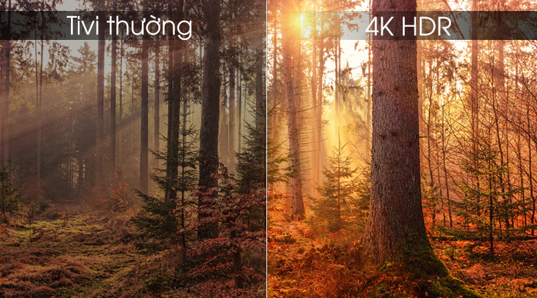 4K HDR - Android Tivi OLED Sony 4K 55 inch KD-55A9F