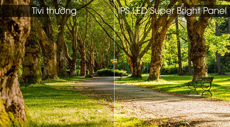 Tấm nền IPS với công nghệ Super Bright Panel - Android Tivi Panasonic 4K 49 inch 49FX650V