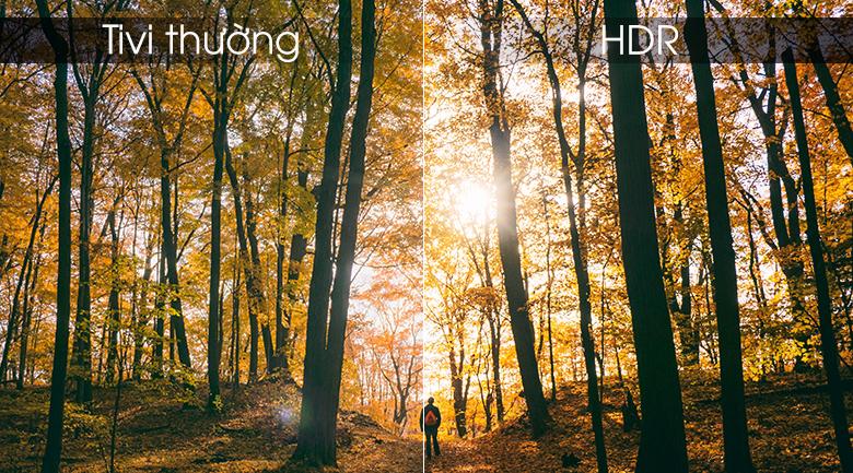 HDR - Android Tivi Panasonic 4K 55 inch 55FX650V