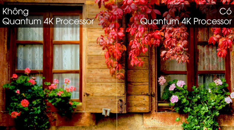 Smart Tivi QLED Samsung 4K 43 inch QA43Q65R - Quantum 4K Processor