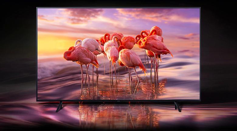 Smart Tivi QLED Samsung 4K 49 inch QA49Q65R - màn hình chấm lượng tử