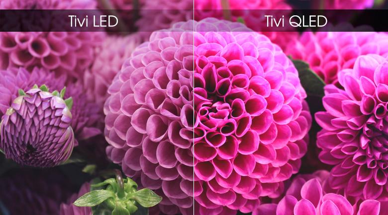 Smart Tivi QLED Samsung 4K 75 inch QA75Q65R - Màn hình chấm lượng tử QLED