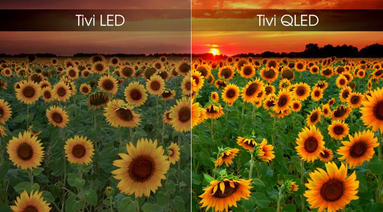 Smart Tivi QLED Samsung 4K 82 inch QA82Q65R - Màn hình chấm lượng tử QLED
