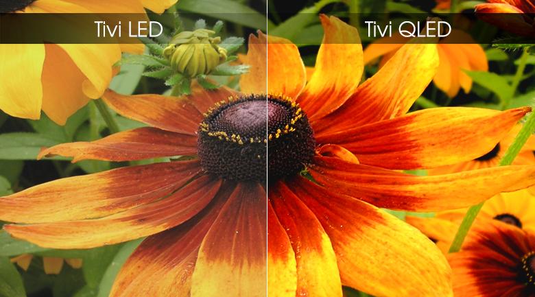 Smart Tivi QLED Samsung 4K 65 inch QA65Q75R - Màn hình chấm lượng tử QLED