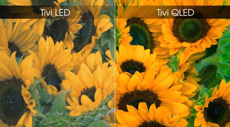 Smart Tivi QLED Samsung 4K 75 inch QA75Q75R - Công nghệ màn hình chấm lượng tử QLED