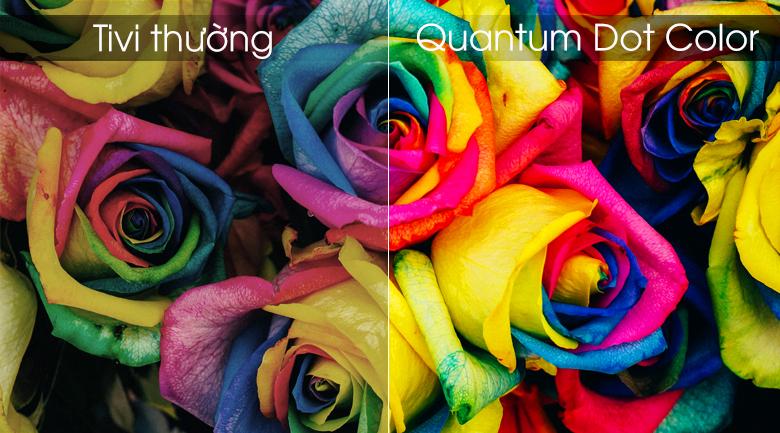Smart Tivi QLED Samsung 4K 75 inch QA75Q90R - Quantum Dot