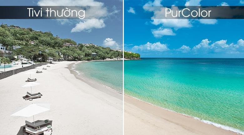 Công nghệ PurColor mang đến dải màu rộng giúp hình ảnh tuyệt mỹ, rực rỡ hơn