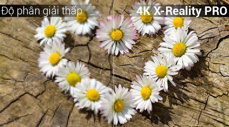 Android Tivi Sony 4K 65 inch KD-65X8000G - 4K X-Reality PRO