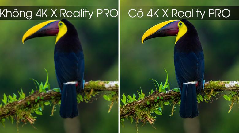 Android Tivi Sony 4K 75 inch KD-75X8000G - 4K X-Reality Pro