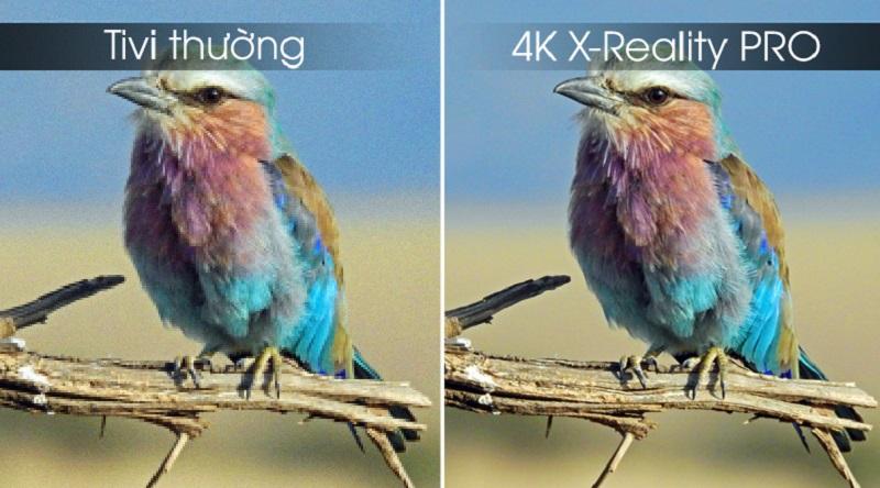 Android Tivi Sony 4K 75 inch KD-75X8000G - công nghệ 4K X-Reality Pro