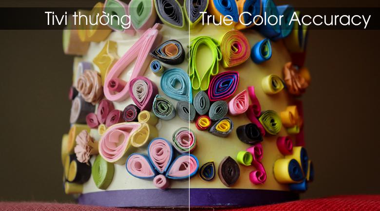Smart Tivi LG 4K 70 inch 70UM7300PTA - True Color Accuracy