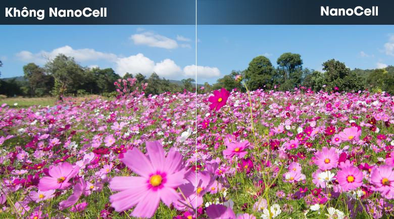 NanoCell-Smart Tivi NanoCell LG 4K 65 inch 65SM8600PTA