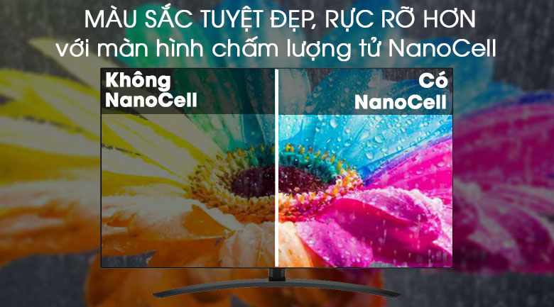 Công nghệ màn hình chấm lượng tử NanoCell - Smart Tivi LG 4K 65 inch 65SM9000PTA