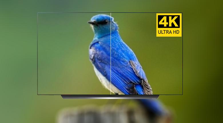 Smart Tivi OLED LG 4K 55 inch 55C9PTA có độ phân giải 4k sắc nét