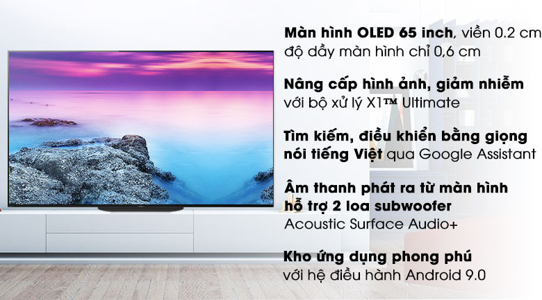 Android Tivi OLED Sony 4K 65 inch KD-65A9G - Tổng quan tivi