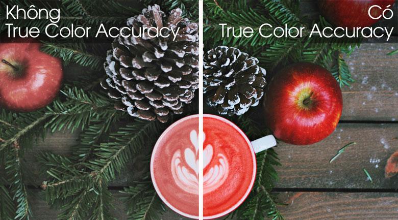 Smart Tivi LG 4K 49 inch 49UM7290PTA - True Color Accuracy