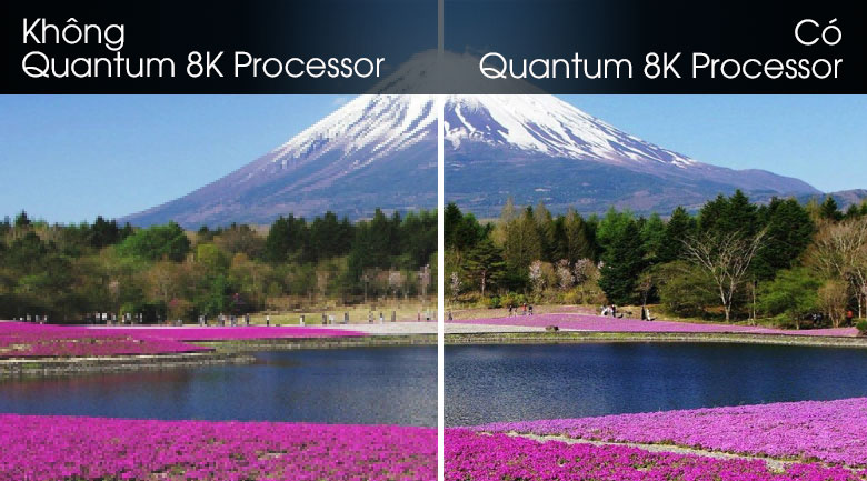 Quantum 8K Processor-Smart Tivi QLED Samsung 8K 82 inch QA82Q800T