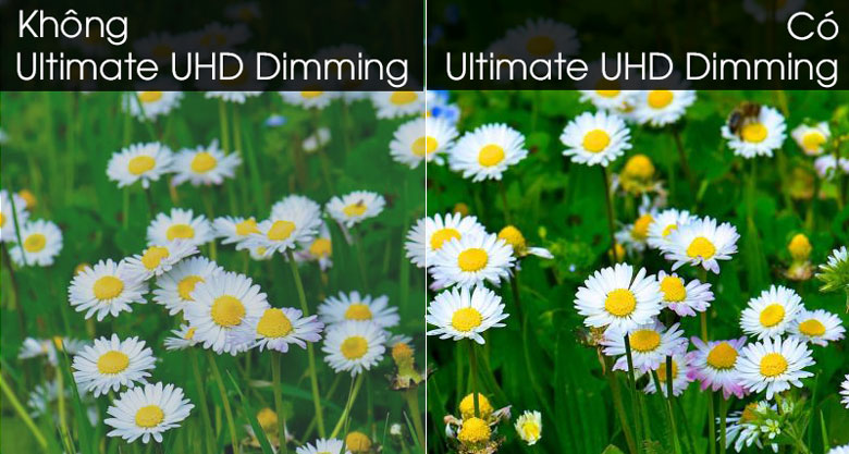 Smart Tivi QLED Samsung 4K 65 inch QA65Q95T - Ultimate UHD Dimming