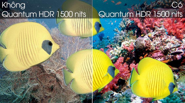 Quantum HDR - Smart Tivi QLED Samsung 4K 49 inch QA49Q80T