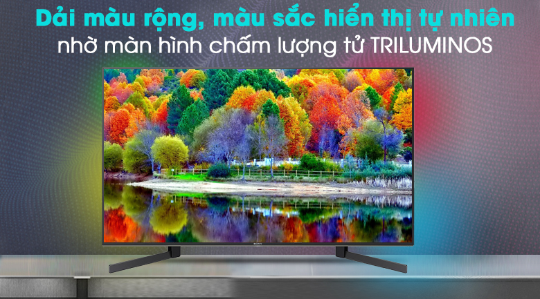 Android Tivi Sony 4K 49 inch KD-49X9500H - TRILUMINOS Display