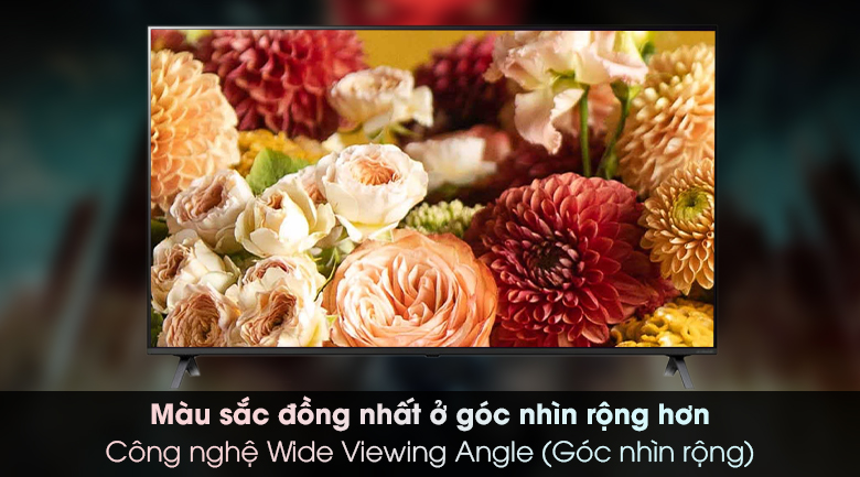 Smart Tivi NanoCell LG 4K 65 inch 65NANO79TND - Wide Viewing Angle