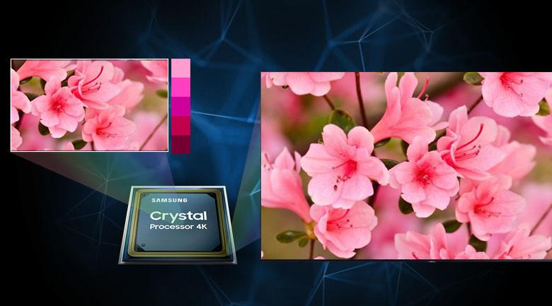 Bộ xử lý Crystal 4K - Smart Tivi Samsung 4K 65 inch UA65TU8000
