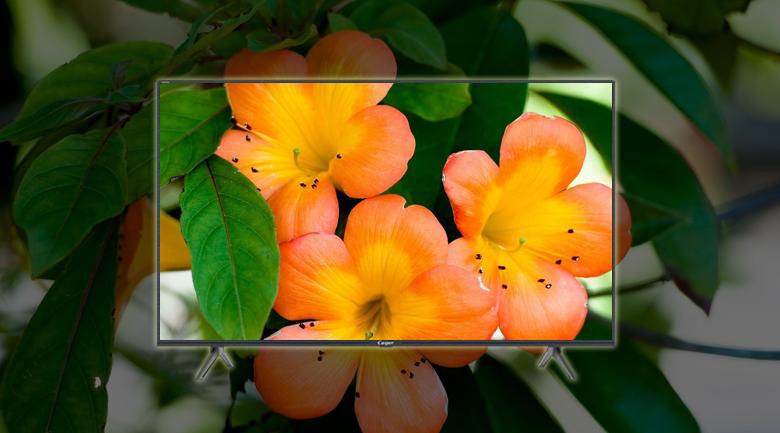 Smart Tivi Casper 43 inch 43FG5200 - Màn hình rực rỡ, sáng hơn cùng công nghệ Super Brightness
