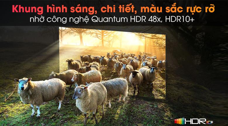 Tivi Neo QLED 8K Samsung QA65QN900A - Tối ưu độ tương phản, độ sáng, màu sắc, độ nét hình ảnh với công nghệ Quantum HDR 48x
