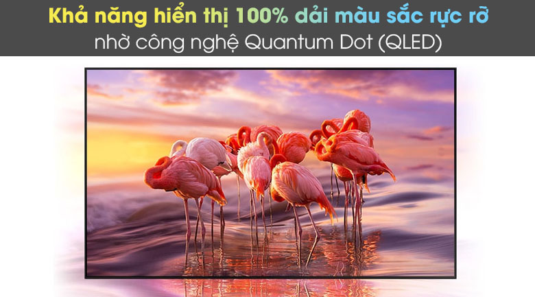 Quantum Dot - Smart Tivi Neo QLED 4K 50 inch Samsung QA50QN90A