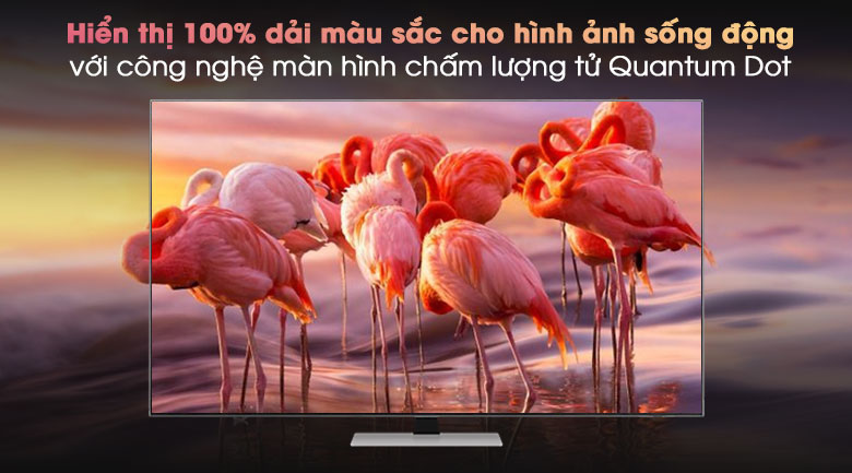 Smart Tivi Neo QLED 4K 85 inch Samsung QA85QN85A - QLED