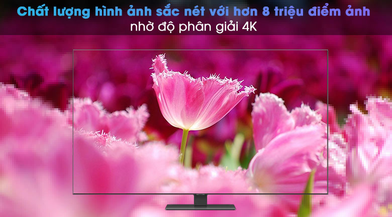 Smart Tivi QLED 4K 55 inch Samsung QA55Q80A - 4K