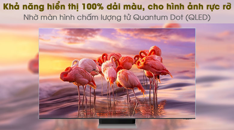 Quantum Dot - Smart Tivi QLED 4K 55 inch Samsung QA55Q65A